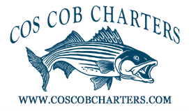 Cos Cob Charters, Long Island Sound, Connecticut