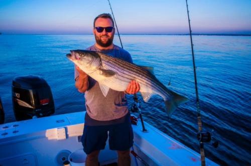 sunset bass